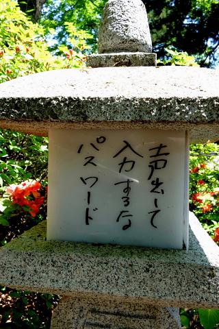 共同浴場脇の石段は酢川温泉神社へ続く参道です。かなり急な石段ですが、等間隔に据えられた石灯籠の火袋に参拝の方々が作られた川柳が記されています。息を切らしながらニヤリとしたり、吹いてみたり。